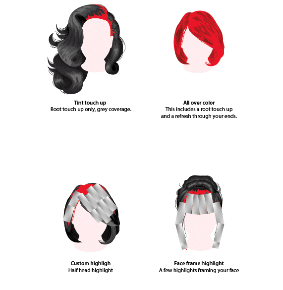 L Salon Hair Chart